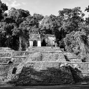 ¡Viva Mexico! Square Collection - Mayan Ruins in Palenque III by Philippe Hugonnard