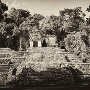 ¡Viva Mexico! Square Collection - Mayan Ruins in Palenque by Philippe Hugonnard