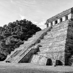 ¡Viva Mexico! Square Collection - Mayan Temple of Inscriptions in Palenque III by Philippe Hugonnard