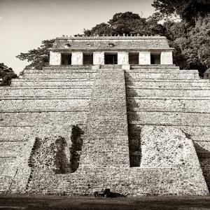 ¡Viva Mexico! Square Collection - Mayan Temple of Inscriptions in Palenque V by Philippe Hugonnard