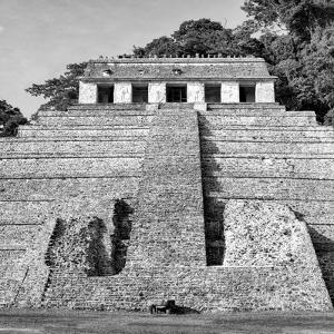 ¡Viva Mexico! Square Collection - Mayan Temple of Inscriptions in Palenque VII by Philippe Hugonnard