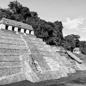 ¡Viva Mexico! Square Collection - Mayan Temple of Inscriptions in Palenque X by Philippe Hugonnard