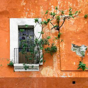 ?Viva Mexico! Square Collection - Old Orange Facade II by Philippe Hugonnard