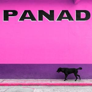 """¡Viva Mexico! Square Collection - """"PANAD"""" Pink Street Wall by Philippe Hugonnard"""