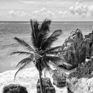 ¡Viva Mexico! Square Collection - Tulum Caribbean Coastline XI by Philippe Hugonnard