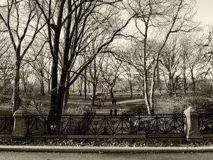 Walk in Central Park by Philippe Hugonnard