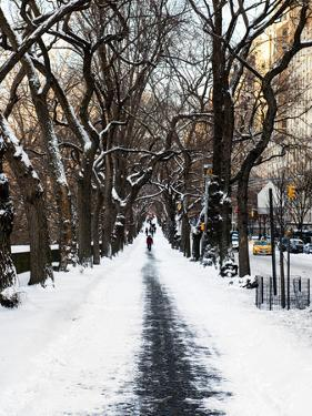 Walking on a Path in Central Park in Winter by Philippe Hugonnard