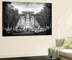 Wall Mural - Buckingham Palace and Black Cabs - London - UK - England - United Kingdom - Europe by Philippe Hugonnard