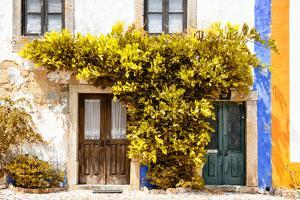Welcome to Portugal Collection - Old Portuguese House facade with Fall Colors by Philippe Hugonnard