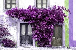 Welcome to Portugal Collection - Old Portuguese House facade with Purple Colors by Philippe Hugonnard