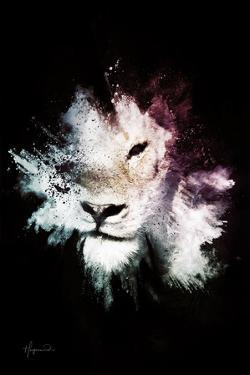 Wild Explosion Collection - The Lion by Philippe Hugonnard