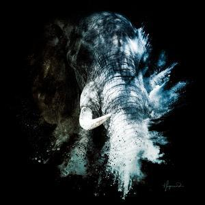 Wild Explosion Square Collection - The Elephant II by Philippe Hugonnard
