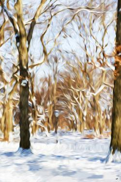 Winter in Central Park III - In the Style of Oil Painting by Philippe Hugonnard