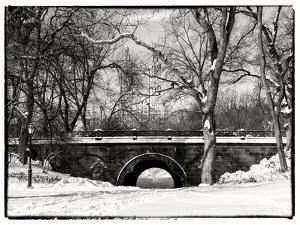 Winter Snow in Central Park by Philippe Hugonnard