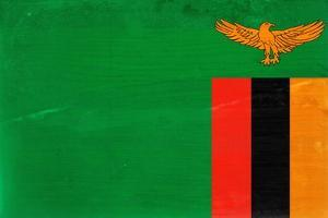 Zambia Flag Design with Wood Patterning - Flags of the World Series by Philippe Hugonnard