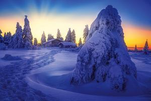 Winter Scene by Philippe Saint-Laudy