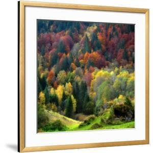 Autumn Erupting by Philippe Sainte-Laudy