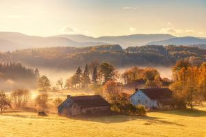 First Autumn Morning by Philippe Sainte-Laudy