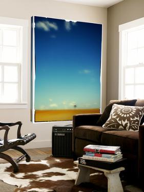 Horizon by Philippe Sainte-Laudy