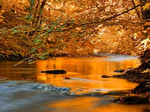 River of Dreams by Philippe Sainte-Laudy