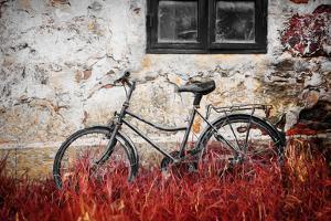 The Forgotten Bike by Philippe Sainte-Laudy