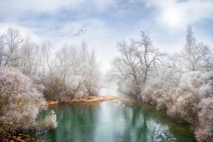 White Paradise by Philippe Sainte-Laudy