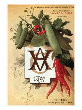 Vilmorin Catalog 1897