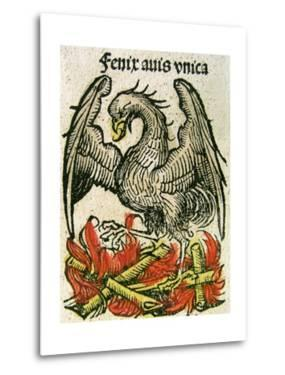 Phoenix Published in the Nuremberg Chronicle, 1493