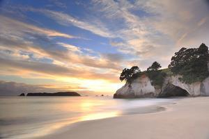 Cathedral Cove by PHOTOGRAPHY BY ANTHONY KO
