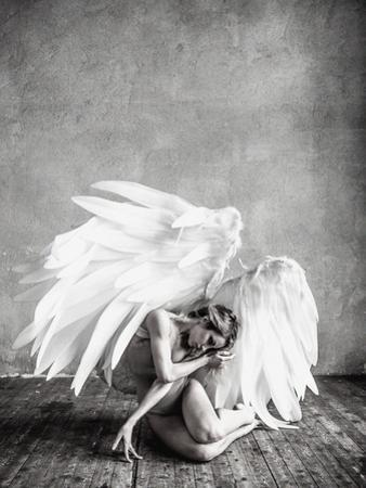 Angel by PhotoINC Studio