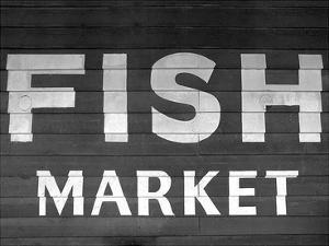 Fish Market by PhotoINC Studio
