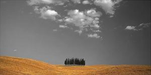 Toscana Landscape by PhotoINC Studio