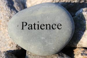 Patience by photojohn830