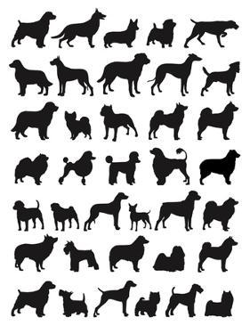 Many Dog Breeds in Silhouettes by photosoup