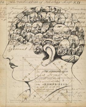 Phrenology Bookpage