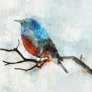 Little Blue Bird Ii by PI Creative Art