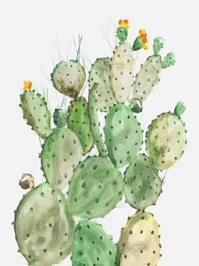 Sunny Cactus by PI Creative Art