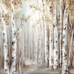 Sunset Birch Forest Iii by PI Creative Art