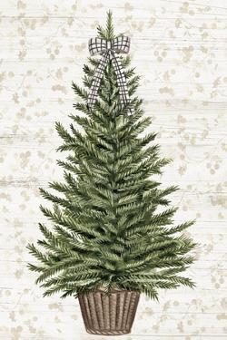 Everygreen Christmas Tree by PI Studio
