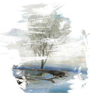 Moonlight Kingdom by PI Studio