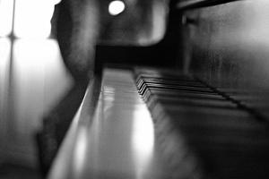 Piano Keys b/w