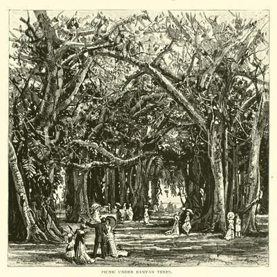https://imgc.allpostersimages.com/img/posters/picnic-under-banyan-trees_u-L-PPBTPM0.jpg?p=0