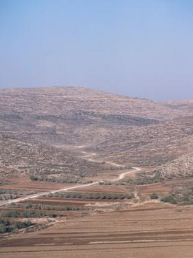 Picturesque View of a Barren Desert with a Road in Samaria, Israel