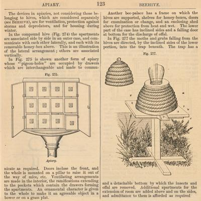 """Vintage Encyclopedia """"Apiary to Beehive"""" by Piddix"""