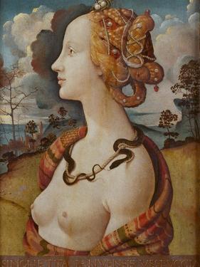 Portrait of Simonetta Vespucci (Cleopatr), C. 1480 by Piero di Cosimo