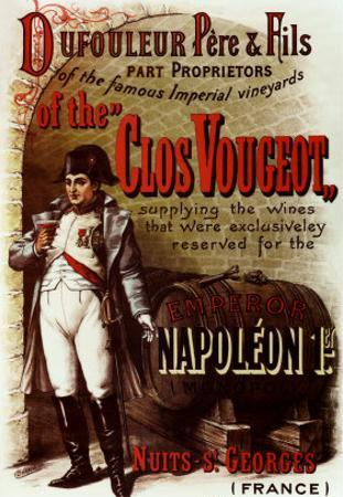 Napoleon by Pierre Chapuis