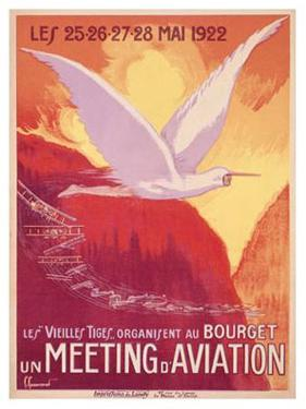 Meeting Aviation by Pierre Commarmond