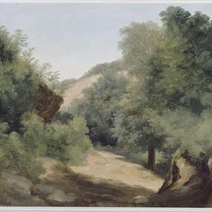 A Nemi : le chemin au soleil by Pierre Henri de Valenciennes