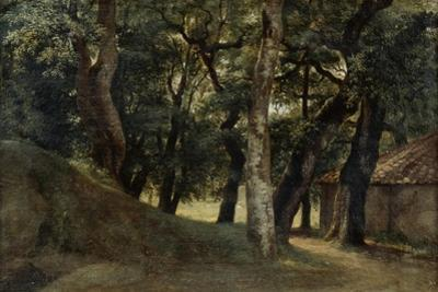 Forest of the Villa Borghese, Late 18Th/Early 19th Century