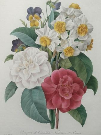Bouqet of Camellias, Narcisses and Pansies